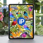 iPad Pro 2018 is powerful, slim, sleek, but not durable