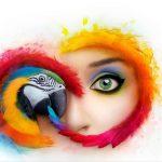 Adobe augmentera deux fois le prix du forfait pour Lightroom et Photoshop