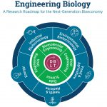 The Consortium for Engineering Biology of the United States presented industry development plans for 20 years