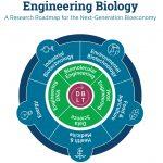 Yhdysvaltojen insinööribiologian konsortio esitteli teollisuuskehityssuunnitelmat 20 vuodeksi