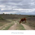 La caméra iPhone 11 Pro est-elle bien meilleure que les iPhone XS et 8?