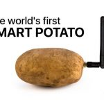 And this happens: a device for communication ... with potatoes was brought to CES 2020