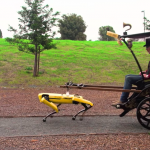 Robot dog used as a horse in a harness