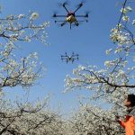 The Chinese began to warn of a virus outbreak with drones