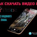 So laden Sie Videos von TikTok ohne Wasserzeichen herunter: Anleitung
