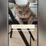 Herausforderung auf Instagram: Was ist und wie man einen Aufkleber hinzufügt
