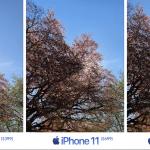 iPhone SE 2, iPhone 11 і iPhone XR: порівняння камер