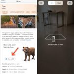 How to add realistic 3D animals to your room using your iPhone
