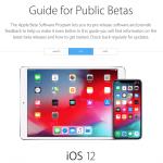 Як встановити iOS 12 GM на iPhone і iPad