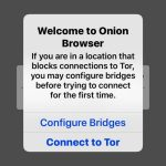 How to use TOR on iPhone and iPad through Onion Browser