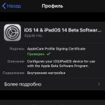 How to download and install iOS 14 beta 1 without a developer account and computer [PROFILE]
