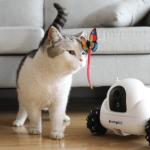 Xiaomi on kehittänyt robotin lemmikkien viihdyttämiseen
