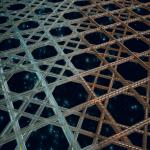 Merisienien luuranko innoitti tutkijoita luomaan uudentyyppistä materiaalia
