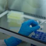 Research: coronavirus can infect brain cells