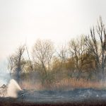 What are zombie fires and how they create a vicious cycle of global warming