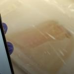З'явилася технологія для біопечаті міні-нирок
