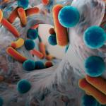 Vědci změnili toxické pesticidy na antibiotika