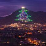Regardez le plus petit arbre de Noël du monde: fabriqué par un étudiant en physique