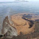 Solné jezero ve Spojených státech nebylo znečištěno ropou, ale miliardami vajec krevet
