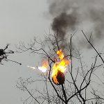 Les Chinois ont commencé à exterminer les guêpes à l'aide de drones équipés de lance-flammes