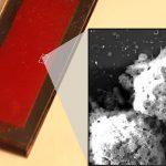Des scientifiques cultivent des cellules tueuses naturelles à l'aide d'une puce microfluidique