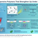 The new polymer reacts to mechanical stress almost like muscle