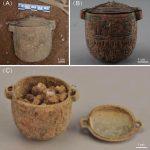 Une crème pour le visage d'un homme de 2700 ans découverte lors de fouilles en Chine