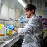Un système robotique teste des milliers d'échantillons de sang pour le coronavirus à la fois