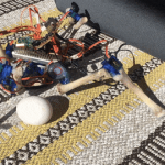 """""""Big Brother"""" pour les poulets: que se passe-t-il si les poulets commencent à communiquer avec des robots"""