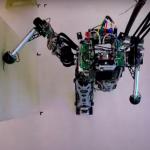La démarche du robot rendu encore plus humaine