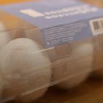У 3D-друкованому біореакторі виростили маленький мозок