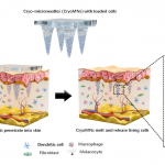 Microneedle ice patches deliver drugs and then melt