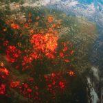 Warum ist eine Erwärmung sogar um 1,5 Grad gefährlich? Erklären, was Russland und die Welt erwartet