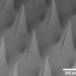 Microneedle patch will cure skin diseases caused by Staphylococcus aureus