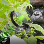 كورنينغ تكشف النقاب عن Gorilla Glass DX و DX +: نظارات واقية لكاميرات الهواتف الذكية