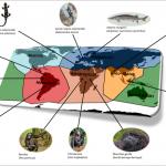 حدد العلماء المناطق الأكثر تضرراً بانقراض الأنواع