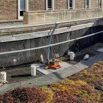 Bacteria living in concrete destroy bridges, houses and roads