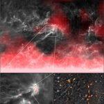 وجدت منطقة تشكل النجوم مشابهة للنظام الشمسي المبكر