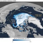 Global warming is killing plankton in the Arctic Ocean