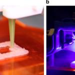Куряче м'ясо надрукували на 3D-принтері і підсмажили лазером. Вийшло смачніше, ніж з печі